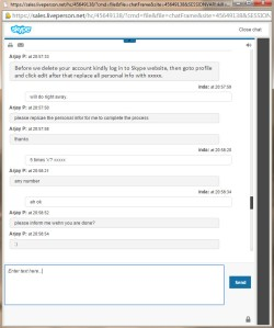 Skype chatsupport6